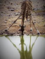 Namibia 5