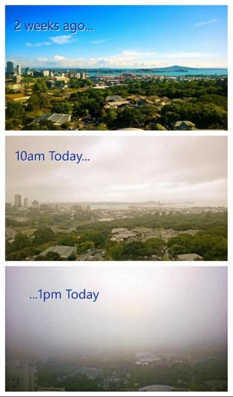 Auckland Weather