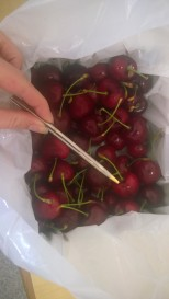 Giant Cherries