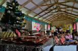Merry Christmas Fiji